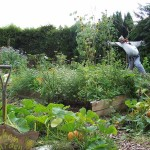 Yarrells Kitchen Garden
