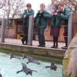 Trip To London Zoo